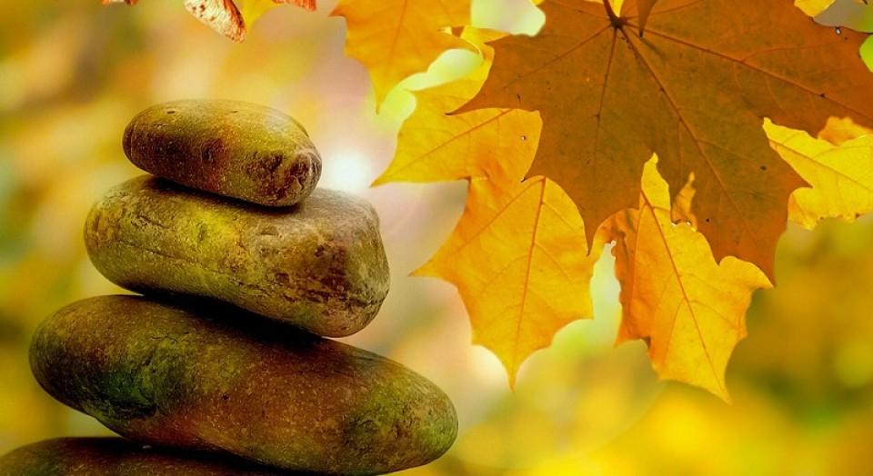 Talleres de Entrenamiento en Terapia Gestalt   AQUI AHORA